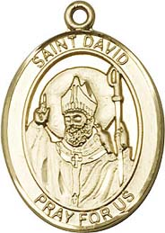 Religious Medals: St. David of Wales GF Medal