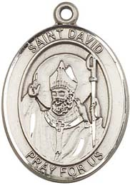 Religious Medals: St. David SS Saint Medal